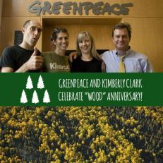 greenpeace and kimberly clark